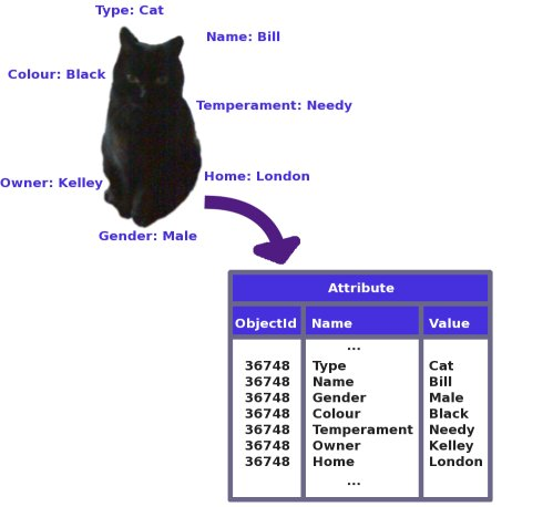 Figure 1: The attributes of a cat stored in a table as name-value pairs